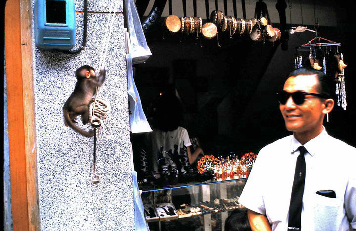 Souvenir stand with monkey